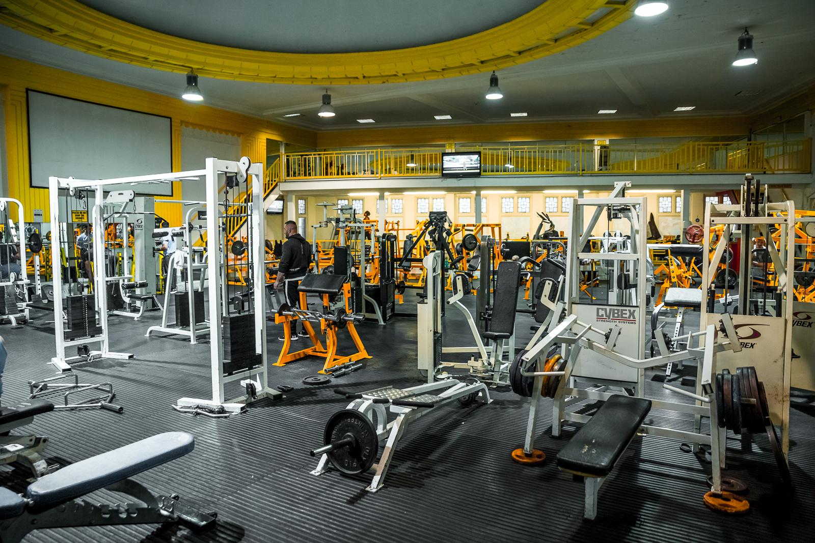 Gym n8